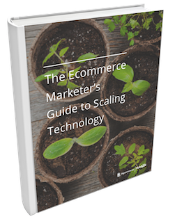 Ecommerce_Marketers_Guide_to_Scaling_Technology-Book_Cover-251.png