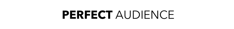 perfect-audience-logo.png